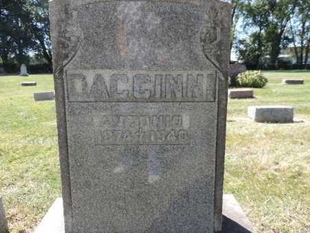 DACCINNI, ANTONIO - Franklin County, Ohio | ANTONIO DACCINNI - Ohio Gravestone Photos