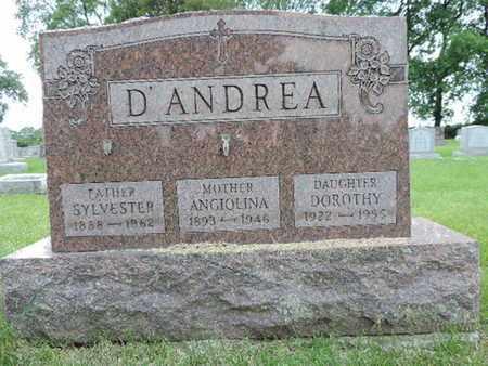 D'ANDREA, DOROTHY - Franklin County, Ohio | DOROTHY D'ANDREA - Ohio Gravestone Photos