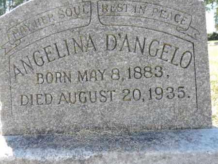 D'ANGELO, ANGELINA - Franklin County, Ohio | ANGELINA D'ANGELO - Ohio Gravestone Photos