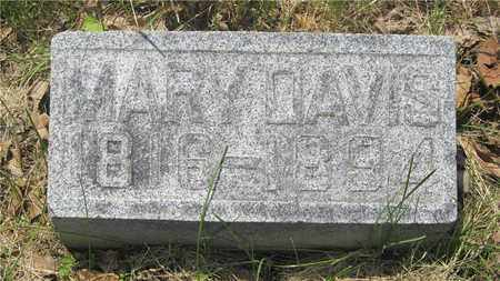 DAVIS, MARY - Franklin County, Ohio | MARY DAVIS - Ohio Gravestone Photos