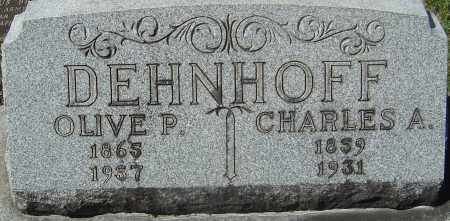 DEHNHOFF, OLIVE P - Franklin County, Ohio | OLIVE P DEHNHOFF - Ohio Gravestone Photos