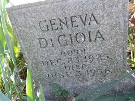 DIGIOIA, GENEVA - Franklin County, Ohio | GENEVA DIGIOIA - Ohio Gravestone Photos