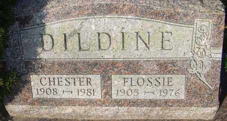 DILDINE, CHESTER - Franklin County, Ohio | CHESTER DILDINE - Ohio Gravestone Photos