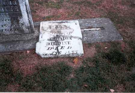 DILDINE, MARY - Franklin County, Ohio   MARY DILDINE - Ohio Gravestone Photos