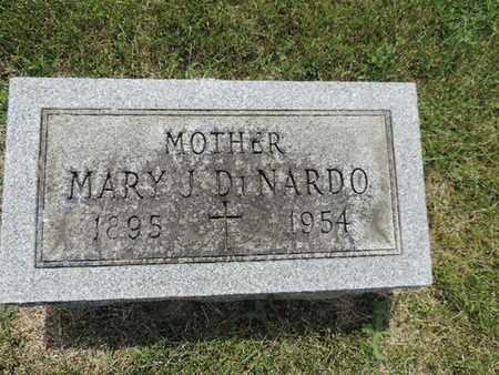 DINARDO, MARY J. - Franklin County, Ohio   MARY J. DINARDO - Ohio Gravestone Photos
