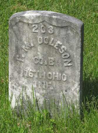 DOLESON, F. M. - Franklin County, Ohio | F. M. DOLESON - Ohio Gravestone Photos
