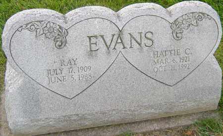 EVANS, HATTIE C - Franklin County, Ohio | HATTIE C EVANS - Ohio Gravestone Photos
