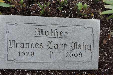 FAHY, FRANCES - Franklin County, Ohio   FRANCES FAHY - Ohio Gravestone Photos