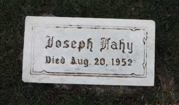 FAHY, JOSEPH - Franklin County, Ohio   JOSEPH FAHY - Ohio Gravestone Photos