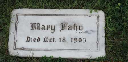FAHY, MARY - Franklin County, Ohio | MARY FAHY - Ohio Gravestone Photos