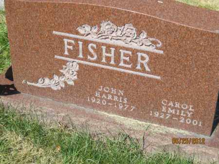 HANSEN FISHER, CAROL EMILY - Franklin County, Ohio | CAROL EMILY HANSEN FISHER - Ohio Gravestone Photos