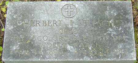 FLESCH, HERBERT - Franklin County, Ohio   HERBERT FLESCH - Ohio Gravestone Photos