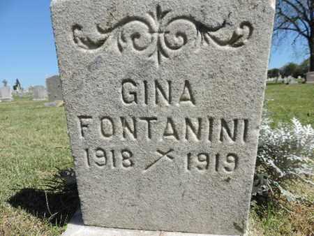 FONTANINI, GINA - Franklin County, Ohio | GINA FONTANINI - Ohio Gravestone Photos