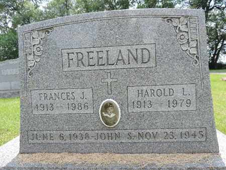 FREELAND, JOHN S. - Franklin County, Ohio | JOHN S. FREELAND - Ohio Gravestone Photos