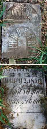 FRY, PHEBE - Franklin County, Ohio | PHEBE FRY - Ohio Gravestone Photos