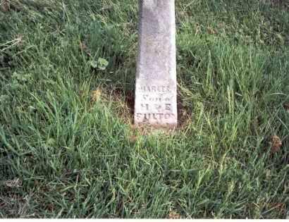 FULTON, CHARLES - Franklin County, Ohio | CHARLES FULTON - Ohio Gravestone Photos