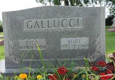 GALLUCCI, MARY - Franklin County, Ohio   MARY GALLUCCI - Ohio Gravestone Photos