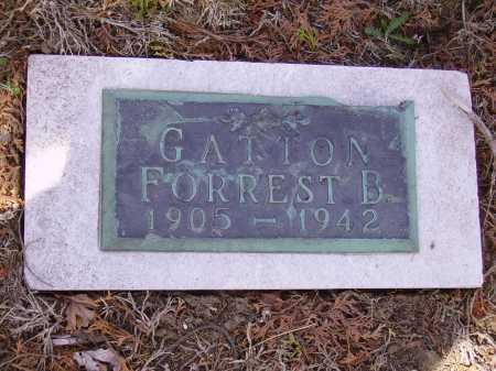 GATTON, FORREST B. - Franklin County, Ohio   FORREST B. GATTON - Ohio Gravestone Photos
