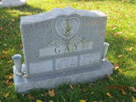 REESE GAY, JOYCE ANN - Franklin County, Ohio | JOYCE ANN REESE GAY - Ohio Gravestone Photos