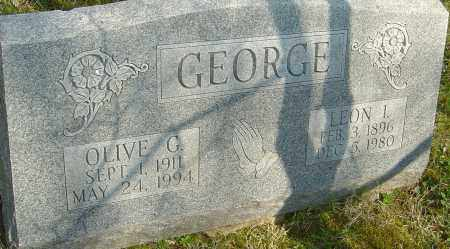 GEORGE, OLIVE G - Franklin County, Ohio | OLIVE G GEORGE - Ohio Gravestone Photos