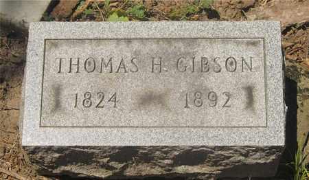 GIBSON, THOMAS H. - Franklin County, Ohio   THOMAS H. GIBSON - Ohio Gravestone Photos