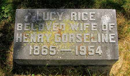 RICE GORSELINE, LUCY - Franklin County, Ohio | LUCY RICE GORSELINE - Ohio Gravestone Photos