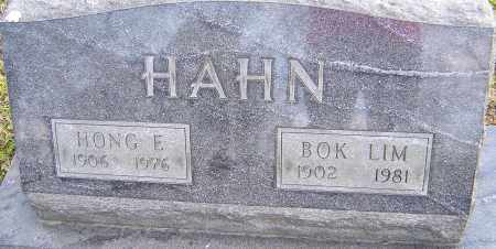 HAHN, HONG - Franklin County, Ohio | HONG HAHN - Ohio Gravestone Photos