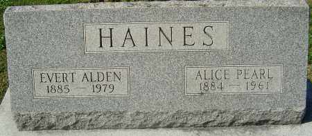 HAINES, ALICE PEARL - Franklin County, Ohio | ALICE PEARL HAINES - Ohio Gravestone Photos