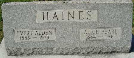 HAINES, EVERT ALDEN - Franklin County, Ohio | EVERT ALDEN HAINES - Ohio Gravestone Photos
