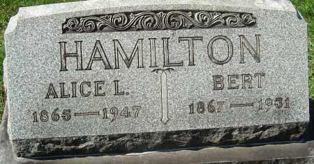 HAMILTON, BERT - Franklin County, Ohio | BERT HAMILTON - Ohio Gravestone Photos