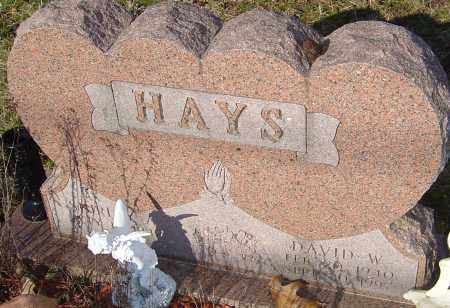 HAYS, DAVID WILSON - Franklin County, Ohio | DAVID WILSON HAYS - Ohio Gravestone Photos