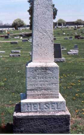 HELSEL, CATHERINE - Franklin County, Ohio   CATHERINE HELSEL - Ohio Gravestone Photos