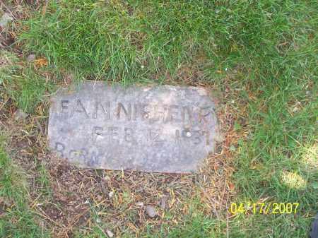 HENRY, FANNIE - Franklin County, Ohio | FANNIE HENRY - Ohio Gravestone Photos