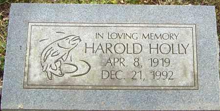 HOLLY, HAROLD - Franklin County, Ohio | HAROLD HOLLY - Ohio Gravestone Photos