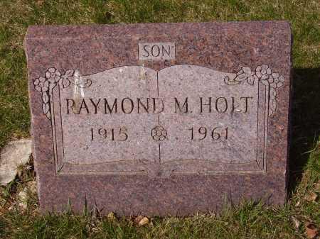 HOLT, RAYMOND M. - Franklin County, Ohio | RAYMOND M. HOLT - Ohio Gravestone Photos
