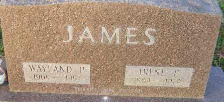 JAMES, WAYLAND - Franklin County, Ohio | WAYLAND JAMES - Ohio Gravestone Photos