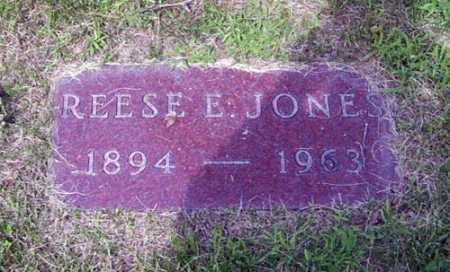 JONES, REESE E. - Franklin County, Ohio   REESE E. JONES - Ohio Gravestone Photos