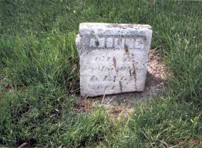 KING, ADOLINE - Franklin County, Ohio | ADOLINE KING - Ohio Gravestone Photos