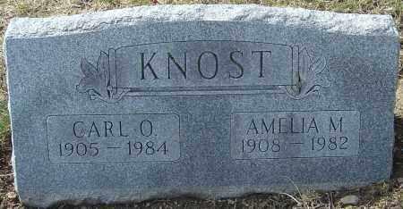 SMITH KNOST, AMELIA M - Franklin County, Ohio | AMELIA M SMITH KNOST - Ohio Gravestone Photos