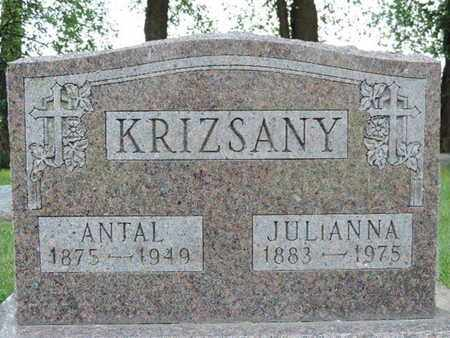 KRIZSANY, JULIANNA - Franklin County, Ohio | JULIANNA KRIZSANY - Ohio Gravestone Photos