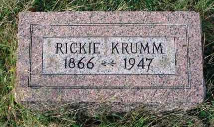 KRUMM, RICKIE - Franklin County, Ohio | RICKIE KRUMM - Ohio Gravestone Photos