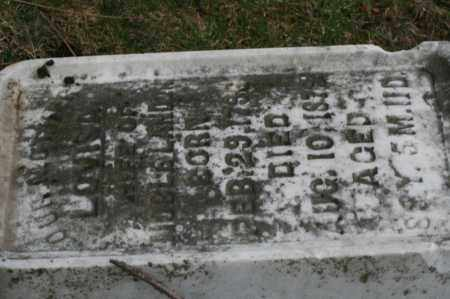 BEAUMONT LANDON, LOVISA - Franklin County, Ohio | LOVISA BEAUMONT LANDON - Ohio Gravestone Photos
