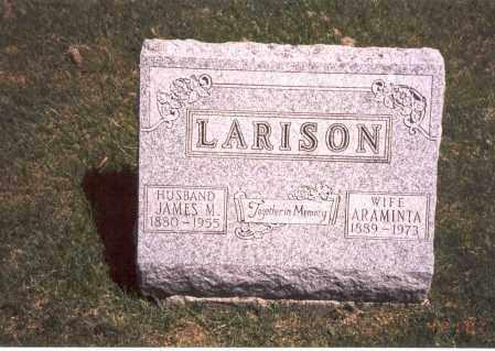 LARISON, JAMES M. - Franklin County, Ohio | JAMES M. LARISON - Ohio Gravestone Photos
