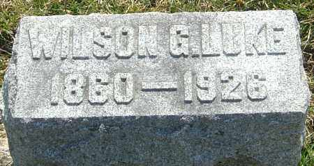 LUKE, WILSON G - Franklin County, Ohio | WILSON G LUKE - Ohio Gravestone Photos