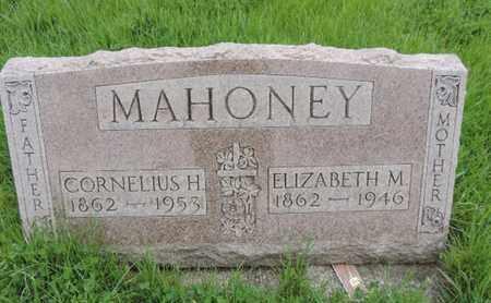 MAHONEY, ELIZABETH M - Franklin County, Ohio | ELIZABETH M MAHONEY - Ohio Gravestone Photos