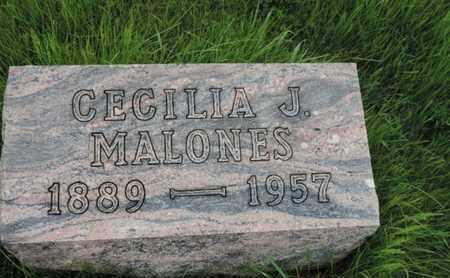 MALONES, CECILIA J - Franklin County, Ohio | CECILIA J MALONES - Ohio Gravestone Photos