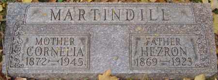MARTINDILL, CORNELIA - Franklin County, Ohio | CORNELIA MARTINDILL - Ohio Gravestone Photos