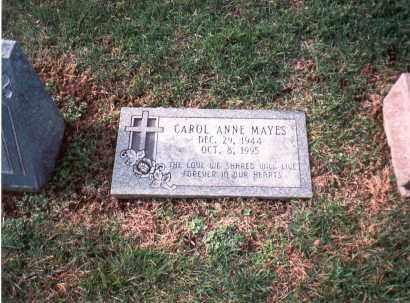 RAY MAYES, CAROL ANNE - Franklin County, Ohio | CAROL ANNE RAY MAYES - Ohio Gravestone Photos