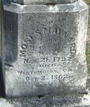 MAYNARD, MOSES - Franklin County, Ohio | MOSES MAYNARD - Ohio Gravestone Photos