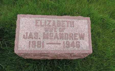 MCANDREW, ELZABETH - Franklin County, Ohio | ELZABETH MCANDREW - Ohio Gravestone Photos
